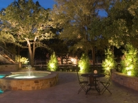 elegant-landscape-lighting-ideas