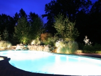 poolside-landscape-lighting