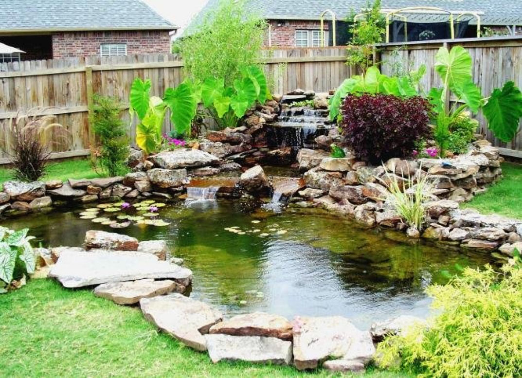 7 most breathtaking koi fish ponds qnud for Backyard pond ideas with waterfall