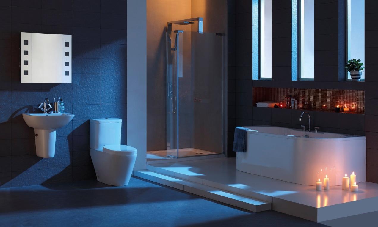 Master Bathroom Ideas (6479)