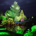 Bright Landscape Lighting Ideas