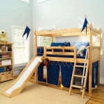 Bunk Bed with Slide