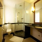 Compact Toilet and Glass Shower