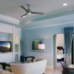 Contemporary Ceiling Fan with Lights