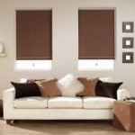 Contemporary WIndow Roller Shades