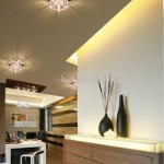 Designer Ceiling Light Fixture