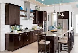 Finished Kitchen Cabinet