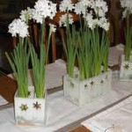 Fresh Flower Dining Table Centerpieces
