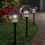 Garden Solar Lights