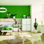 Green Modern Boys Bedroom Design