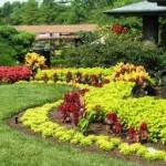 Home Garden Designs