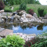 Koi Fish Pond Designs