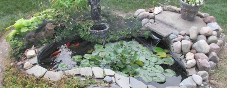 7 Most Breathtaking Koi Fish Ponds Qnud