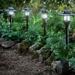 Landscape Solar Lights