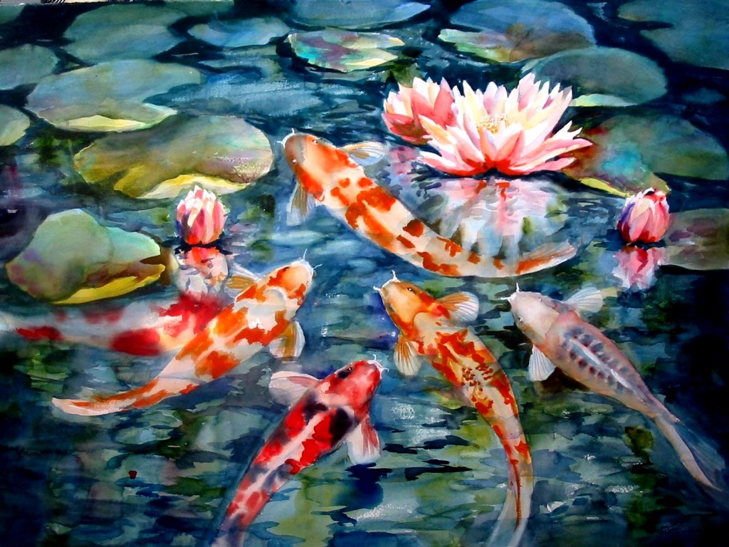 Large Koi Fish Pond