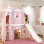 Loft Bed with Slide