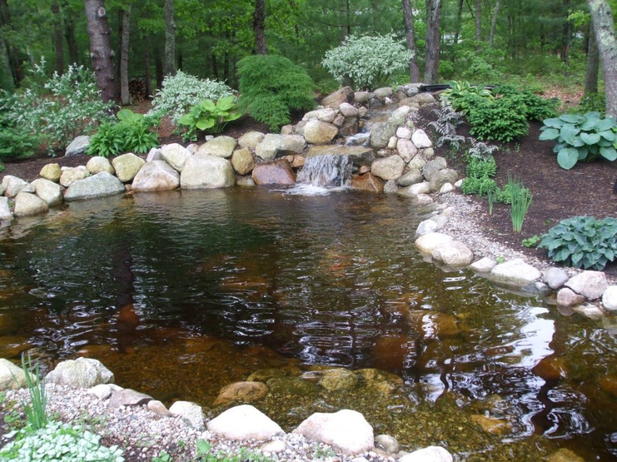 7 most breathtaking koi fish ponds qnud for Fish pond waterfall ideas
