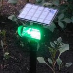 Outdoor Solar Lights - Garden