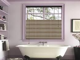 Purple Roman Shades