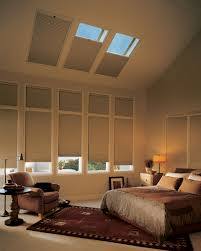 Skylight Window