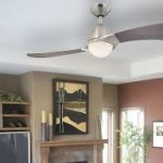 Two Blade Ceiling Fan with Light