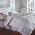White Down Comforters